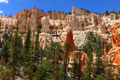 IMG_1944 (Ichiban7too) Tags: bryce national park canyon utah nature hoodoo red sandstone