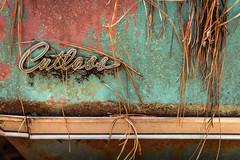 Lacerations (Wayne Stadler Photography) Tags: abandoned preserved junkyard georgia classic automotive derelict overgrown vehiclesrust rusty retro vintage oldcarcity rustographer rustography white