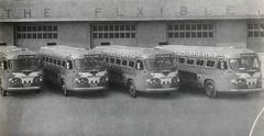 Omnibus Santiago-Habana No. 44, 45, 46, y 47  Marzo/1946 (ROGALI) Tags: omnibussantiagohabana no44 no45 no46 no47 flxiblebus flxibleclipper29b148 americanbus guaguasamericanas guaguasdecuba guagua omnibus bus habana cuba rogali