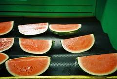 (nikki.lake) Tags: watermelon olympusxa kodakultramax400 kodak analogue analog film 35mm