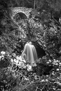 long exposure fantail of water gushes just under the Lower Bridge, falls of Bruar, long exposure, black & white, Perth & Kinross, Scotland, UK