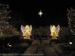 20031220 Bellingrath Xmas 0016 Angels.jpg (Alan Louie - www.alanlouie.com) Tags: bellingrath christmas alabama theodore unitedstates us ussoutheast