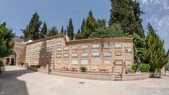 FMG_1666 (Marco Gualtieri) Tags: israele palestina galilea giudea terrasanta pellegrinaggio marcone1960 nikond850 d850
