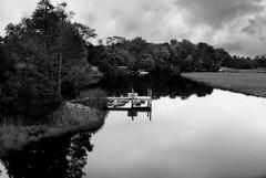 R1-045-21 (David Swift Photography) Tags: davidswiftphotography newjersey scullvillenj atlanticcountynj eggharbortownshipnj creeks water reflectiononwater docks marsh wetlands forest 35mm