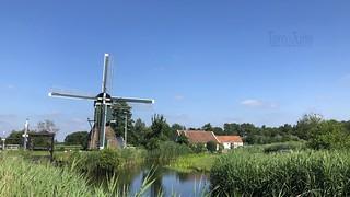 Wipmolen De Trouwe Waghter, Tienhoven, Netherlands - 1350