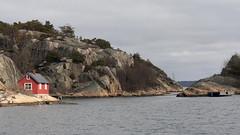 Hvalerkysten 1.4, Østfold, Norway (Knut-Arve Simonsen) Tags: hvaler norge норвегия norway noriega norwegen norvegia norvège नॉर्वे 挪威 ノルウェー நோர்வே νορβηγία sydnorge sørnorge østlandet glomma oslofjorden østfold norden scandinavia скандинавия э́стфолл фре́дрикстад гло́мма ослофьорд papper vesterøya