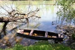 Duga Resa, Croatia - Parking place under the wood on river Mrežnica (Marin Stanišić Photography) Tags: croatia river mrežnica wood boat