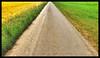 triangles (P.Höcherl) Tags: 2018 iphone8 snapscan photolemur outdoor way triangles path free wirmachendenwegfrei naabtalradweg unterwildenau oberpfalz bayern deutschland germany bavaria upperpalatinate