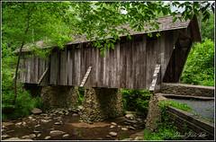 Pisgah Covered Bridge (Darrell Duke) Tags: coveredbridge coveredbridges uwharrienationalforest nationalforest northcarolina northcarolinacoveredbridges