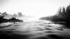 Nepean River (StephEvaPhoto) Tags: dg zbw primelens canoneos art sigma australia blackandwhitephotography prime nsw 6d fullframe newsouthwales new south wales westernsydney monochromephotography 24mm blackandwhite sigma24mmf14dgart blackwhite canoneos6d yarramundireserve richmondlowlands monochrome f14 hawkesbury sydney lowlands tasmania nepeanriver richmond river