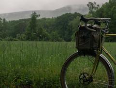 Williamsburg, MA (koperajoe) Tags: summer bicycle westernmassachusetts 650b mist field green velo rain cyclotouring hillsmeadow