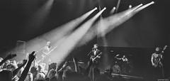 Monday Mayhem (peterphotographic) Tags: photo05062018091554sefexedwm mondaymayhem iphone apple 6s instagram ©peterhall thelibertines libertines petedoherty hopingforpalestine camdenroundhouse roundhouse northlondon london england uk britain music livemusic live gig concert stage singer guitarist band rock rocknroll nik silverefexpro2 blackandwhite blackwhitephotos monochrome soyouwanttobearockandrollstar