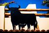 El Toro (Thomas Hawk) Tags: baja bajacalifornia cabo cabosanlucas loscabos mexico oleole bull vacation fav10