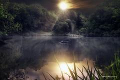 Sterling Pond Morton Arb (ABPhotoArt-) Tags: lake sunset dreamscape landscape photoart reflection fox fog mist sun