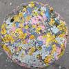 Squared circle - Lichen and paint (Moochin Photoman) Tags: ballycraigy antrim bollard fromabove pattern abstract squaredcircle samecoloursastheflickrdonuts gofigure fadedcoloursofloyalty rwb yellow