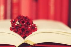 Passionnément... (*c*j*) Tags: rojo 7dwf «lifeisarainbow» fleurs flowers flora livre book rouge red macromademoiselle