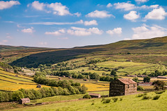 Swaledale Barns (patrica.evans3) Tags: yorkshire dales swaledale barns fields view landscapes sky clouds