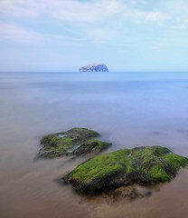 Bass Rock (craigdwilkinson) Tags: bassrock seaweed longexposure motionblur seascape seacliffbeach