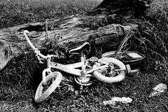 Bicycle (jhunter!) Tags: kodaktrix contaxg2 rodinal