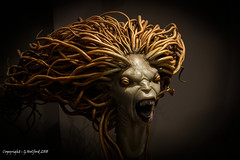 Scary Monsters (Holfo) Tags: harrypotter monster hair teeth scary eyes nikon d750 creature mythical pointed sharp