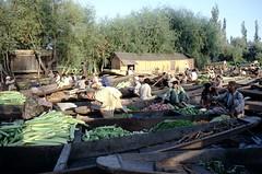Market on the river - Srinagar Kashmir India (Pietro D'Angelo2012) Tags: market srinagar kashmir india
