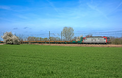 FS E652 151 (maurizio messa) Tags: alpc pavese lombardia mir e652 tigre cargo mau bahn ferrovia freighttrain fret guterzuge treni trains railway railroad nikond7100