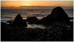 Sunset at Seal Rock (scott branine) Tags: seal rock oregon pacific ocean sunset pentax k1