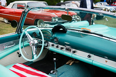 1955 Ford Thunderbird (el.guy08_11) Tags: 1955 ford collection voiture
