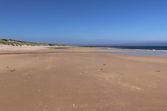 St Combs Beach_may 18_645 (Alan Longmuir.) Tags: stcombsbeach grampian aberdeenshire stcombs