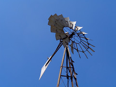 Windmill Park with bonus dove (twm1340) Tags: windmill park cornville az arizona verdevalley yavapai county sign