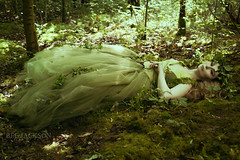 Dream of Summer (barbara.jackson55) Tags: bagworthheathwoods fantasy honeymalone fairy fairytale tulle moss green sunlight summer ivy ferns plants trees