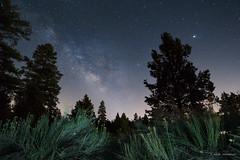 20180519-DSC02589ILCE-6000 (mthomp00) Tags: bigbear california unitedstates us serranocampground nightsky nightphotography milkyway astrophotography