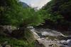 花蓮 太魯閣 Hualien Taroko (DDBan) Tags: 樹木 谿谷 山 水 風景 溪 平靜 天 天空 雲 石頭