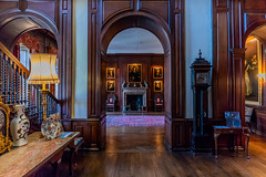 Antony House (trevorhicks) Tags: torpoint england unitedkingdom gb national trust antony house cornwall indoors hallway door light canon 5d mark iv sigma painting art grandfather clock stairs fireplace chair vase
