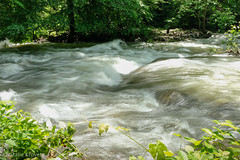 Moormans river (nataliekrovetz) Tags: xt2 river flooding virginia water motion flow fujifilmxt2 fujifilmxseries