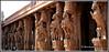 7920 - Shesharaya Mandapam ,Srirangam (chandrasekaran a 50 lakhs views Thanks to all.) Tags: srirangam temple vaishnavites tamilnadu india shesharayamandapam pillars carvings sculptures nayakadynasty monolithicpillars canoneos6dmarkii tamronef28300mm திருவரங்கம சேஷராயர்மண்டபம் tigers hunting horses dagger ramayana stories krishna