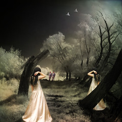 landscape with twins (old&timer) Tags: background infrared filtereffect composite surreal song4u oldtimer imagery digitalart laszlolocsei