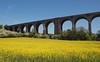 2018_05_0768 (petermit2) Tags: conisbroughviaduct railwayviaduct railway viaduct conisbrough doncaster southyorkshire yorkshire oilseedrape oilseed rape rapeseed