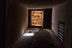2018-4179.jpg (storvandre) Tags: morocco marocco africa trip storvandre ouarzazate draa valley landscape nature desert souss kasbah berber ksar