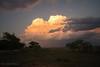 05 24 18 Nolan County Thunderhead (30 of 41) copy (mharbour11) Tags: thunderhead cloud abilene sweetwater texas road rees harbour nolan taylor