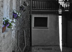 Fiori (ad Introd) (BBIANCA18) Tags: introd valledaosta montagna coloreselettivo fiori viuzza case