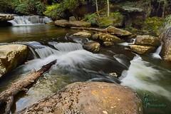 Bark Camp Creek Cascades (VonShawn) Tags: kentucky landscaoe nature stream water cascades waterfall barkcampcreek barkcampcreekcascades danielboonenationalforest