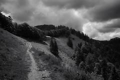 Mount Schnebelhorn (the highest summit in the Canton of Zurich) (Toni_V) Tags: m2408015 rangefinder digitalrangefinder messsucher leicam leica mp typ240 type240 28mm elmaritm12828asph hiking wanderung randonnée escursione schnebelhorn kantonzürich zürioberland zürcheroberland bw blackwhite schwarzweiss monochrome sep2 silverefexpro2 niksoftware clouds sky trail wanderweg sentiero toggenburgerhöhenweg zürioberlandhöhenweg switzerland schweiz suisse svizzera svizra europe ©toniv 2018 180602