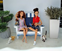 A short break in the shade (Deejay Bafaroy) Tags: bench bank 16 scale playscale miniature miniatur barbie mattel doll dolls puppe puppen cat katze dog dogs hund hunde diorama blue blau white weiss red rot green grün stripes streifen striped gestreift shadow schatten denim madetomove mtm