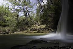 cascade du tondu (Rudy Pilarski) Tags: nikon nature wild sauvage tamron d7100 2470 color couleur colour cascade tree travel arbre eau water france europe europa waterfalls