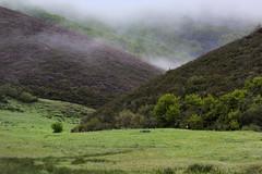 La Pernía-II (pistalde2) Tags: pernía 2018 mayo primavera palencia paisaje montaña niebla