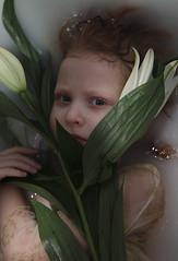 Vivify {5} (dewframe) Tags: girl flower littlegirl emotive beauty naturalportrait sweet melody light milk water