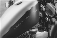 Harley D (G. Postlethwaite esq.) Tags: bw bluebell dof derbyshire farnahgreen harleydavidson sonya7mkii vtwin blackandwhite bokeh cars classicvehicle closeup depthoffield fullframe monochrome motorbike motorcycle photoborder selectivefocus
