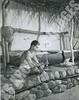 145- 5455 (Kamehameha Schools Archives) Tags: kamehameha archives ksg ksb ks oahu kapalama luryier pop diamond 1954 1955 austin kaawaloa hawaiian drill