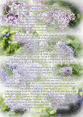 Lilac Lyrics for 25 May every year page 2 of 2 (PHH Sykes) Tags: alzheimers disease dementia sir terry pratchett lilac 25 may every year night watch thepeoplesrevolutionoftheglorioustwentyfifthofmay lyrics thepeoplesrepublicoftreaclemineroad samvimes johnkeel remember memory past present commemoration celebration
